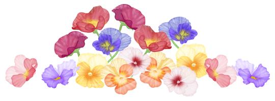 flower_ill
