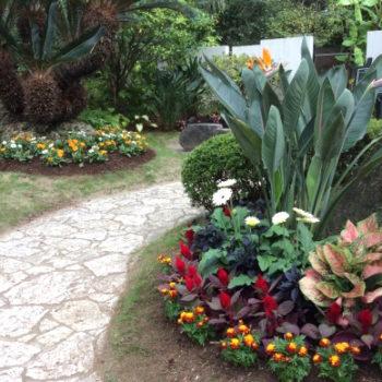 フローランテ宮崎の花壇植栽